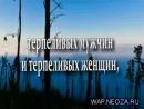 wap.neoza.ru_773f006113ccbf9e2462ea76b98bd713
